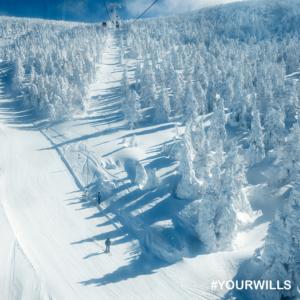 BEST SNOWBOARDING