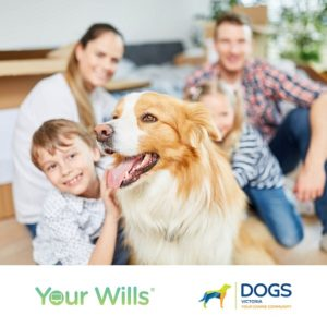 Your Wills x Dogs Victoria
